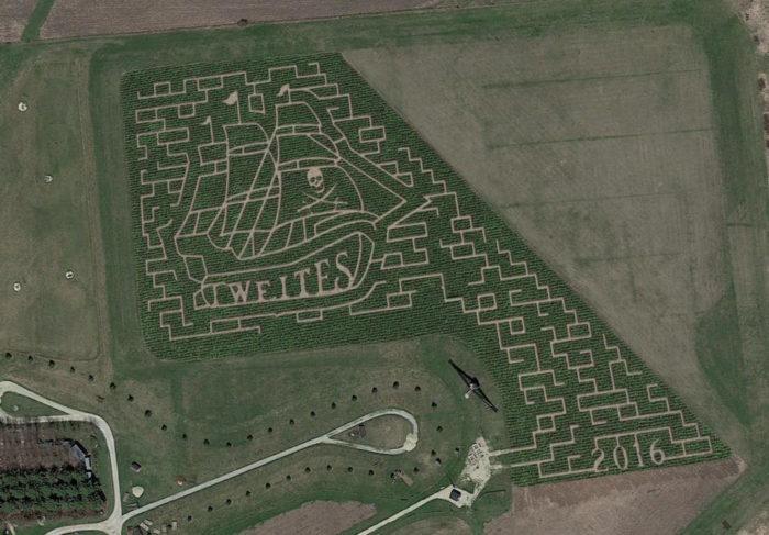 6. Tweite's Corn Maze, Byron