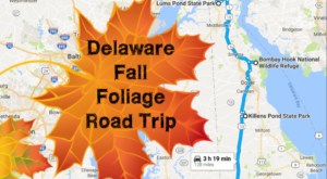 Take This Gorgeous Fall Foliage Road Trip To See Delaware Like Never Before