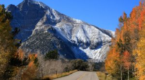 Don't Miss These 11 Places To See Gorgeous Fall Foliage In Nevada