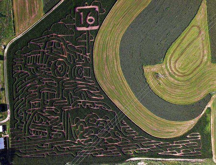 1. Hidden Trails Corn Maze