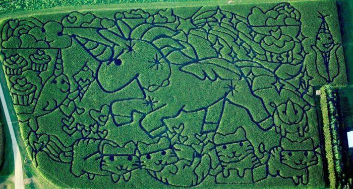 4. Treinen Farm Corn Maze