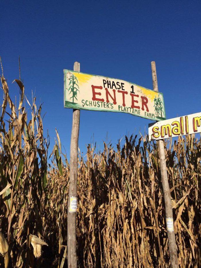 7. Schuster's Farm