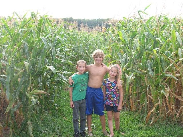 9. Trzebiatowski's Corn Maze