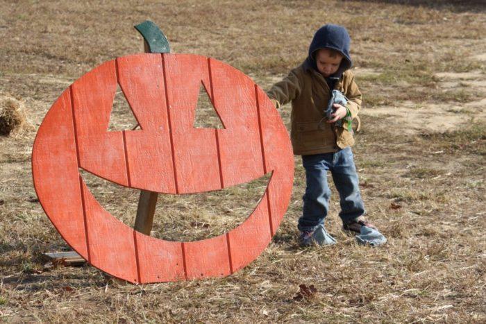 4. Dorney's Pumpkin Patch