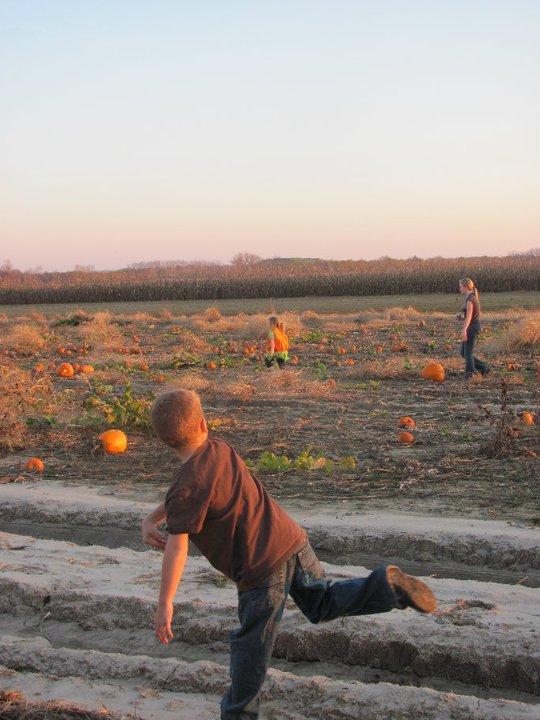 6. Relleke Pumpkin Patch