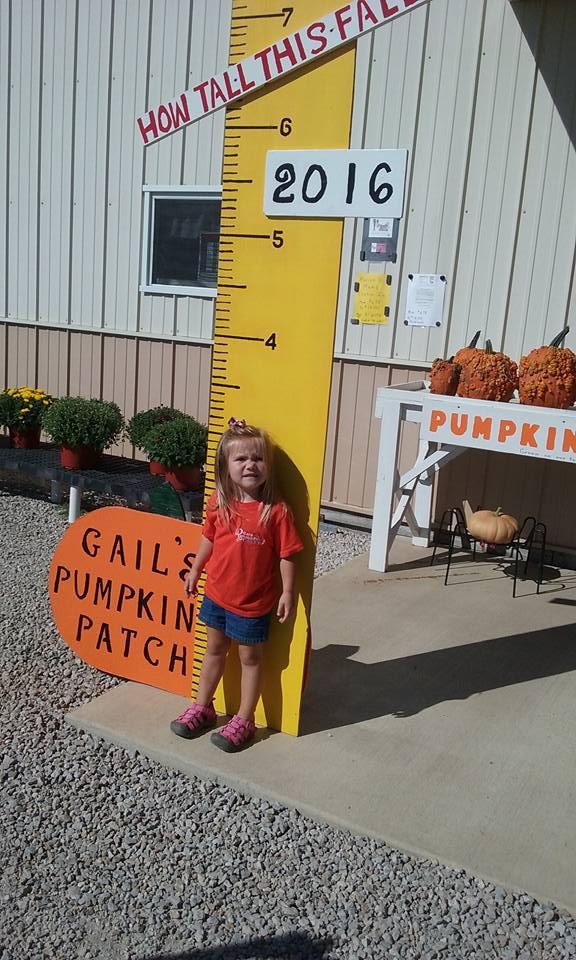 10. Gail's Pumpkin Patch