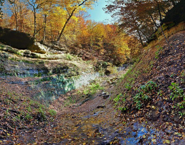 10. Tripp Falls Ravine