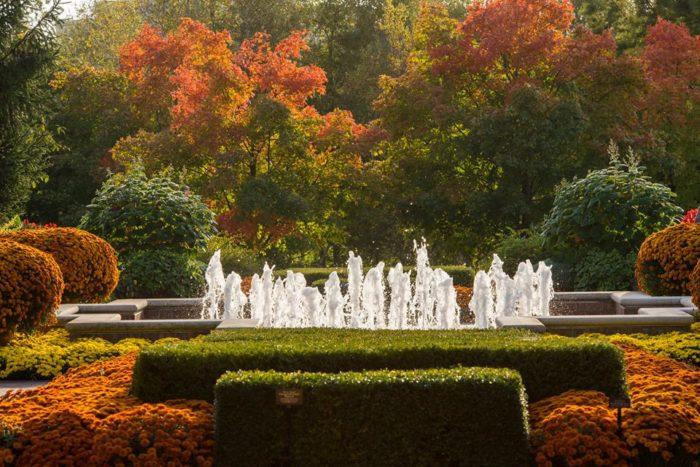 2. Chicago Botanic Garden