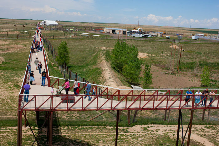 The 1.5-mile long elevated walkway (which is also the longest footbridge in the world), is a monumental achievement that allows visitors to view animals in a non-threatening, non-invasive way that is as natural as possible.