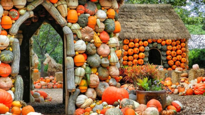 11 of the best most unique fall festivals in texas in 2016 - Botanic gardens pumpkin festival ...