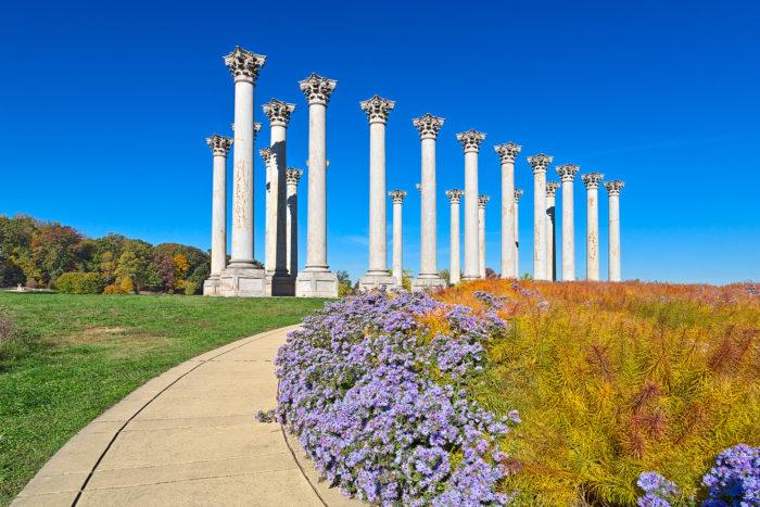 6. National Arboretum