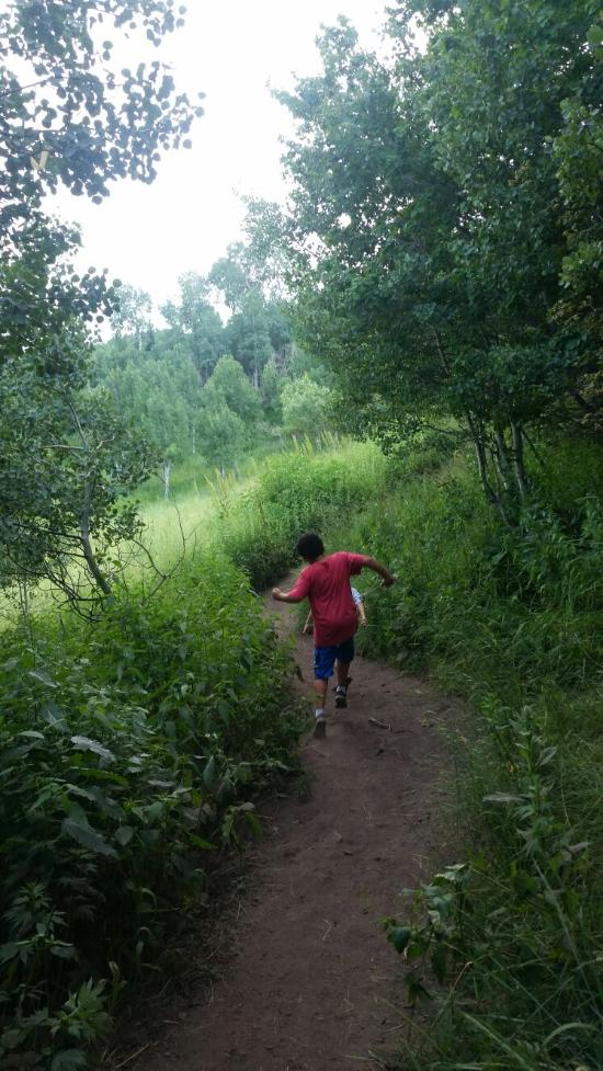 Kids love this hike, and if you go on a weekend you'll likely encounter quite a few youngsters on the path. Parts of the hike (especially down to the falls) are steep, so keep a close eye on young children.