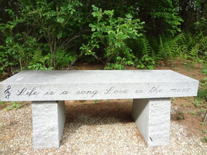 bench-on-the-nature-walk
