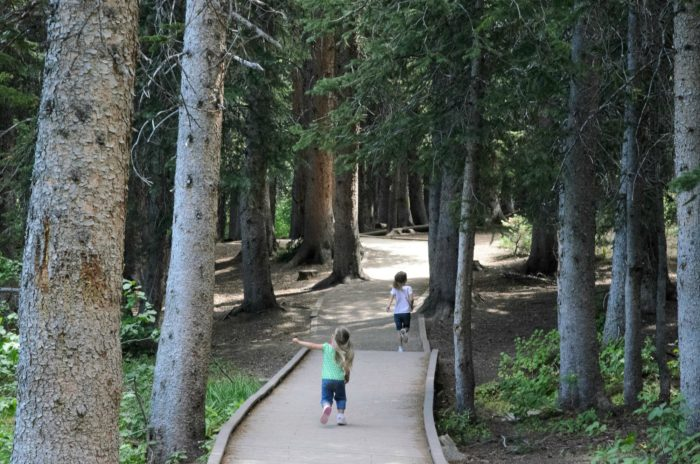This hike is perfect for kids, who will love the wide, level trail.
