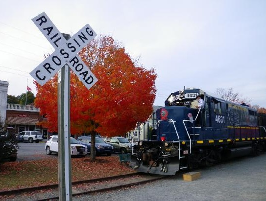 If you or your family members love trains, then this would be the trip for you.