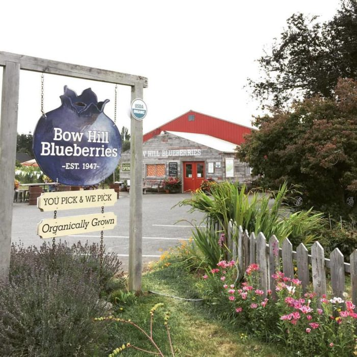 The harvest season at Bow Hill Blueberries may be over for the year (it lasts from July 1 until Labor Day), but the storefront is still open.
