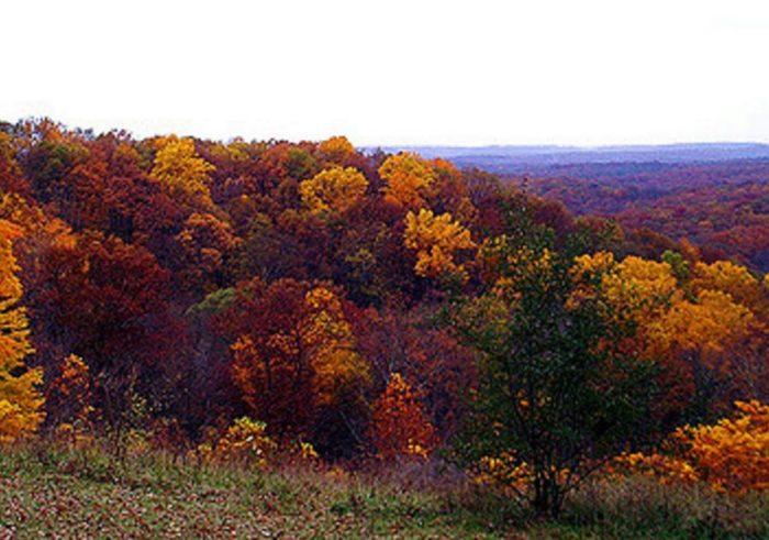 2. Brown County State Park - Nashville