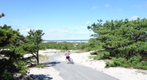 Now Is The Best Time To Hike This Remarkable Sand Dune Trail In Massachusetts