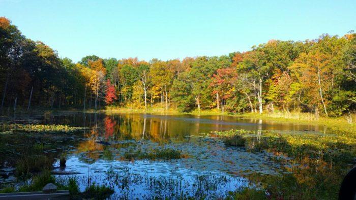 6. Chain O'Lakes Trail