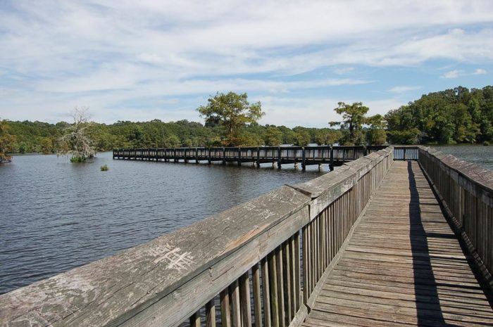 You will also enjoy the boardwalks along the way where you can get glimpses of the water.