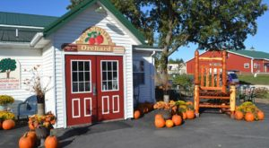 These 10 Charming Apple Orchards In Iowa Are Picture Perfect For A Fall Day