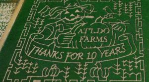 Get Lost In These 8 Awesome Corn Mazes In Texas This Fall
