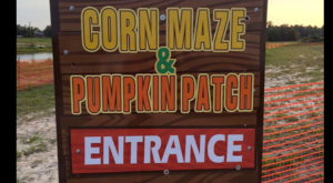 Get Lost In These 16 Awesome Corn Mazes In South Carolina This Fall