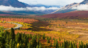 23 Gorgeous Spots To See Fall Foliage That Will Show You Alaska Like Never Before