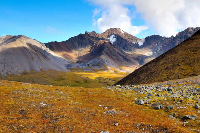 dixie Flickr - Wrangell-St. Elias National Park & Preserve
