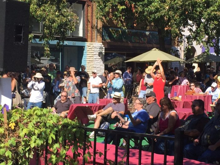 2. Bay Area Blues Festival (Martinez)