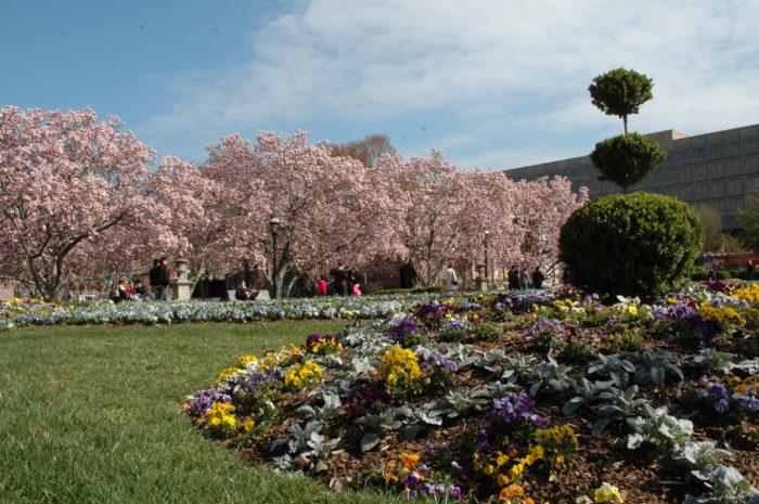 10. Enid A. Haupt Garden