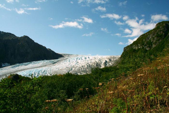 4. Exit Glacier – Seward
