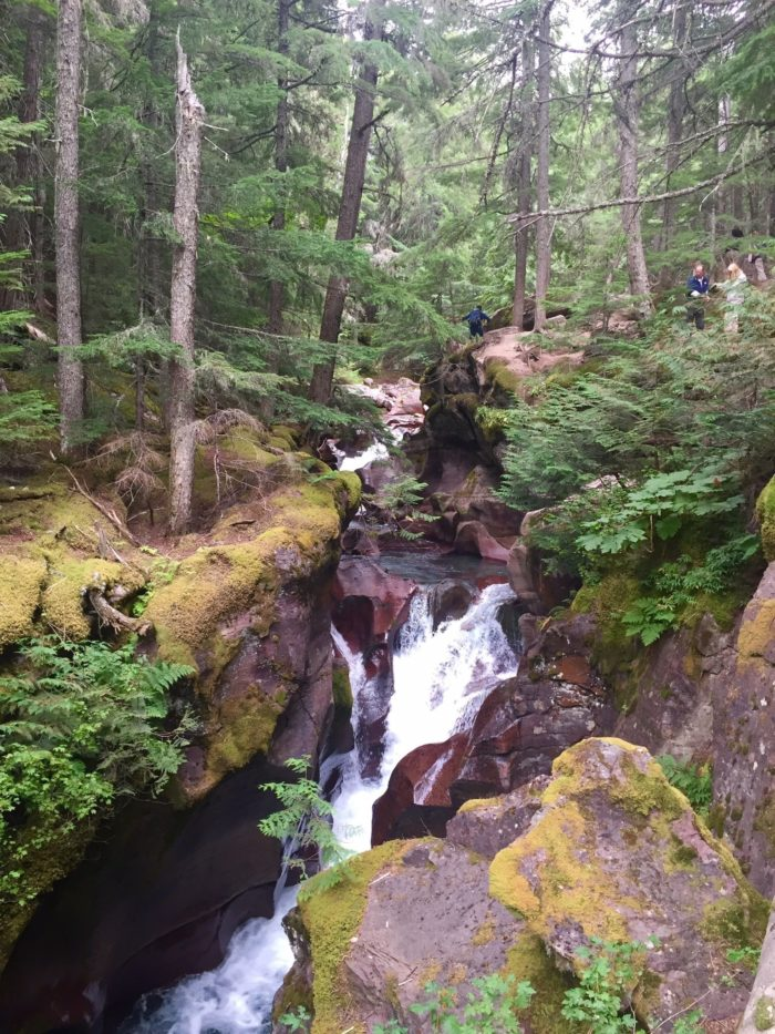 After turning onto the Avalanche Lake Trail you'll encounter a short, steep climb. Soon you'll arrive at the banks of Avalanche Creek, where you'll have an up-close view of glacially melted water rushing down a narrow gorge.