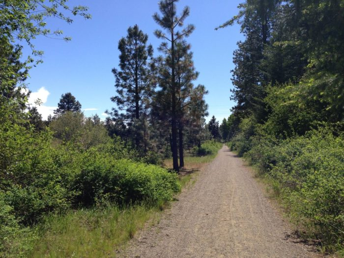 Horseback riding, fishing, camping and hiking the Coal Mines Trailhead are a few of the most popular outdoor activities in the area. The Washington State Horse Park is open through October and has plenty of trails for recreational rides.