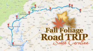 Take This Gorgeous Fall Foliage Road Trip To See South Carolina Like Never Before