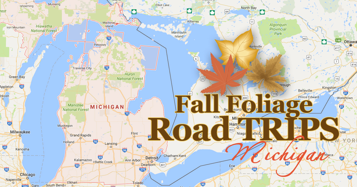 3 Fall Foliage Road Trips To See Autumn Colors In Michigan