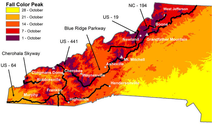 The fall map constructed by Howard Neufield and Michael Denslow shows the estimate of when fall colors will peak in North Carolina. The dates and color-coding help you plan when and where to make the most of your fall foliage road trip.