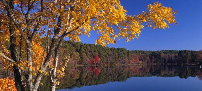 5. Lake Bob Sandlin State Park (Pittsburg)