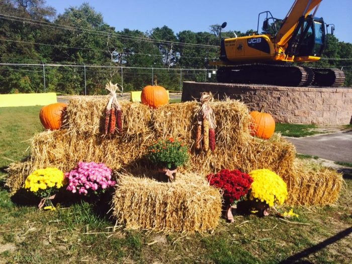 Diggerfest is going on now, every weekend until October 29th. Included with admission are hayrides, a corn maze and free pumpkin picking for children. On Fridays from 10/14-10/28, there will also be special evening hours with bonfires and Halloween movies.