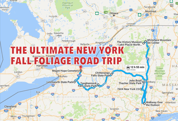 No need to start planning, we've mapped out this entire road trip for you!