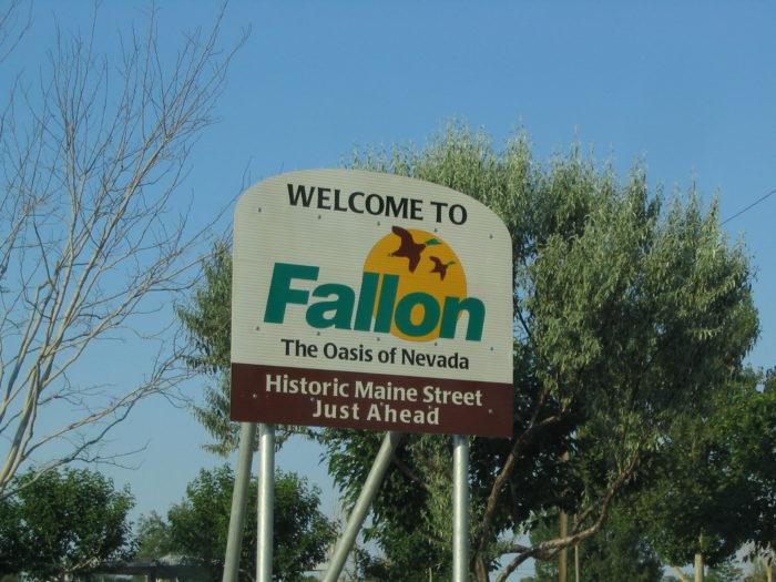 3. Fallon