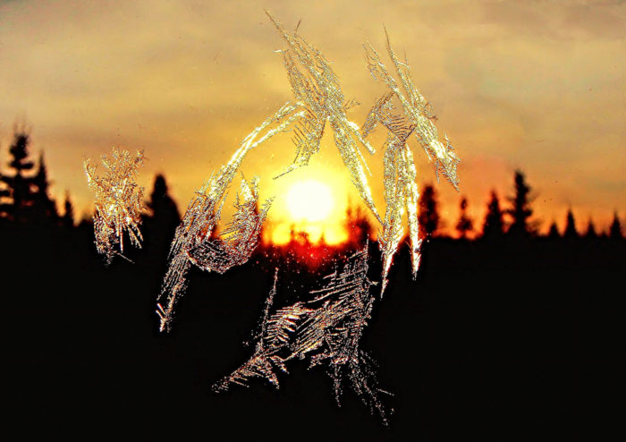 7. In the early morning hours you'll notice a light frost covering everything around you.