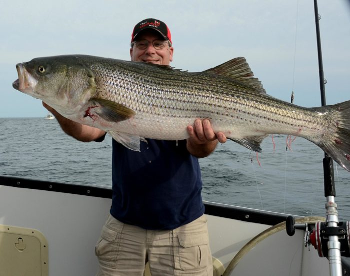 Take a fishing charter if you want to experience fishing for yourself.