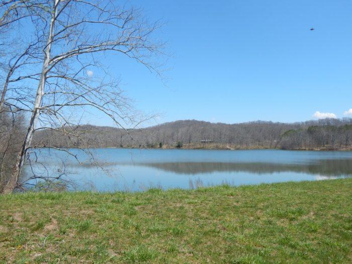 4. Yellowwood Lake Trail
