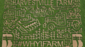 Get Lost In These 10 Awesome Corn Mazes In Iowa This Fall