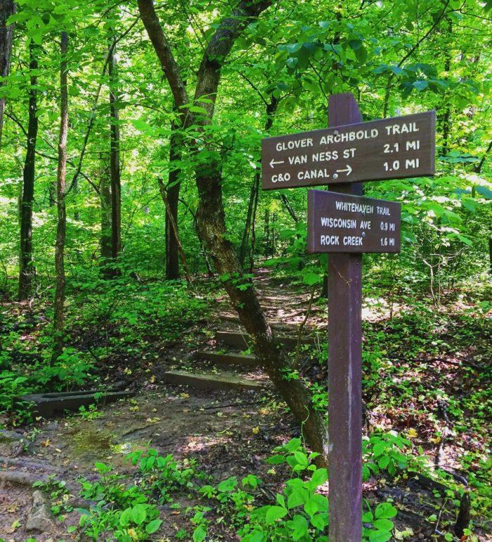 6. Glover Archbold Trail