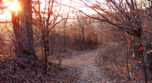 This Just Might Be The Most Beautiful Hike In All Of Missouri