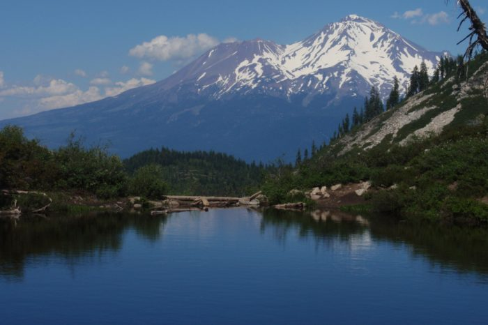 The highest point of this hike is 6050 feet. The views are stunning. Did we mention you can bring your dog along, too?