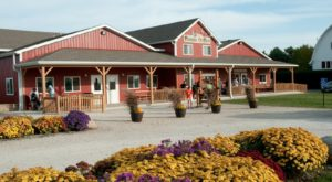 These Charming 10 Apple Orchards In Illinois Are Picture Perfect For A Fall Day