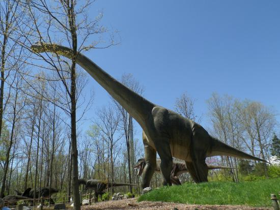 Featuring more than 50 life-sized dinosaurs, this unique park gives you an idea  of what it was like when dinosaurs roamed the earth.